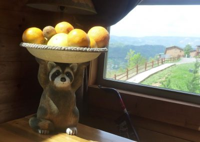raccoon-dining